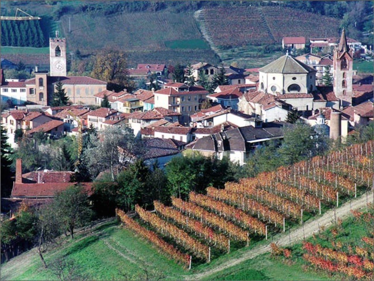 Dogliani as  seen from the vineyards