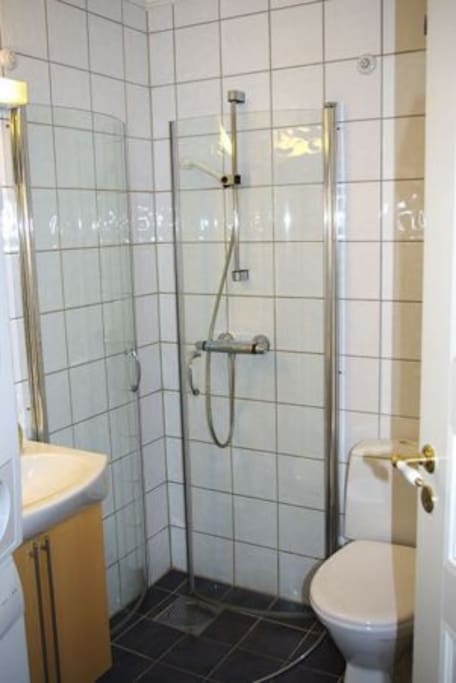 The bathroom With shower, toilet, sink and washing machine.