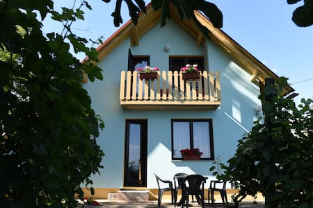 House on the hill surrounded with a vineyard - Mestni Vrh