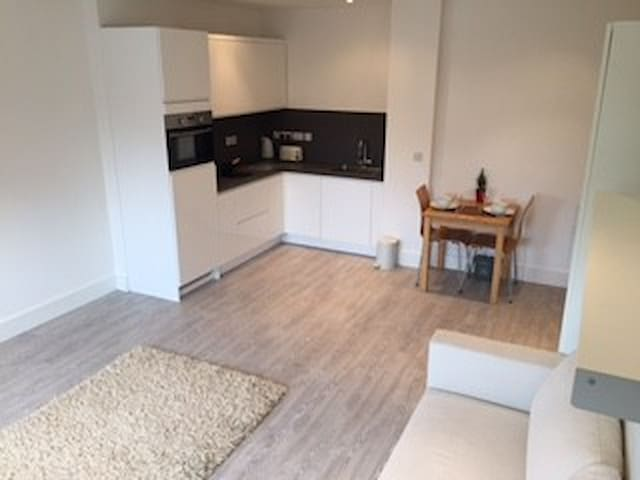 Bright airy new build studio flat - Gerrards Cross - Apartamento