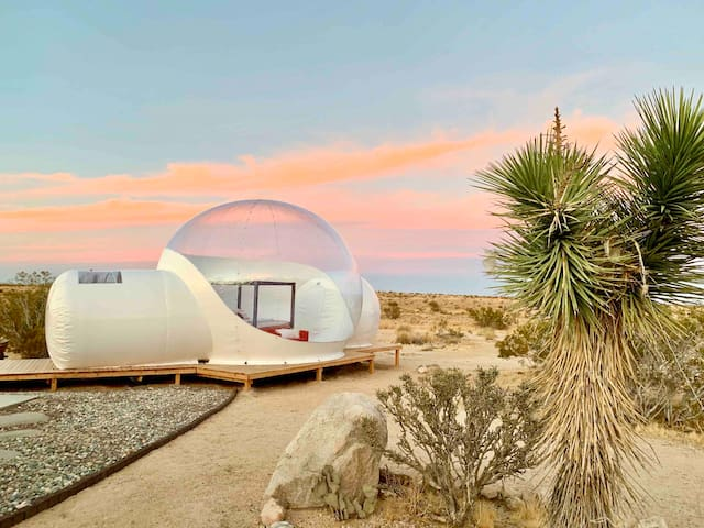 Joshua Tree Modern Stargazing Bubble-tent & House