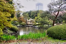 It is a great to have rest here at the heart of Tokyo.