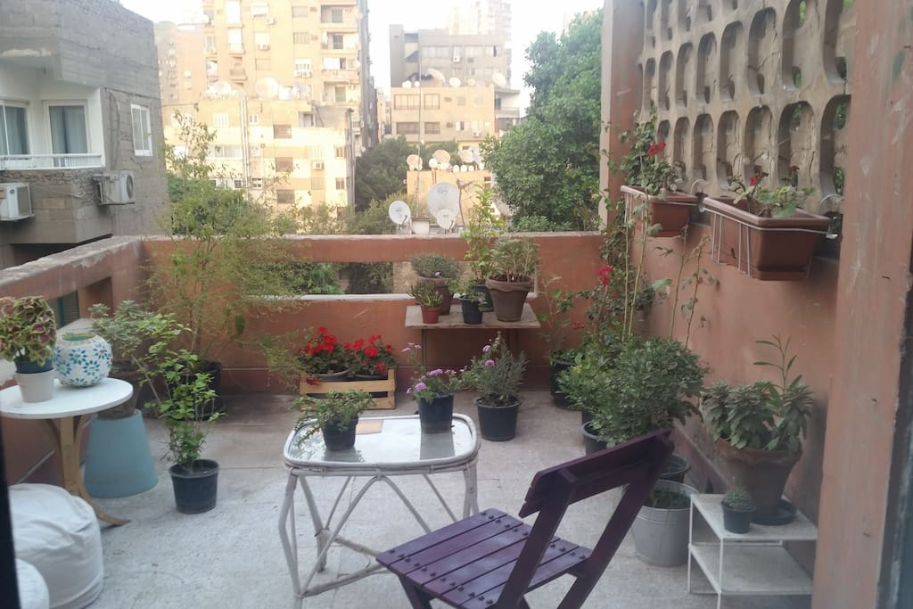 Mid afternoon in the terrace, where you can have your morning coffee, or do some quiet reading.