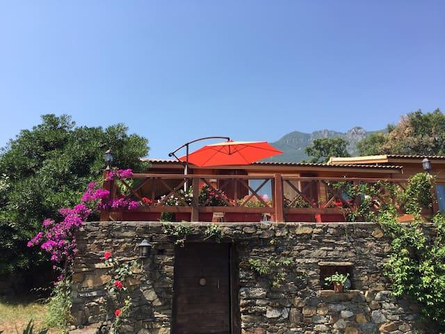 Ambiance cosy entre mer et montagne - Santa Maria Poggio - Talo
