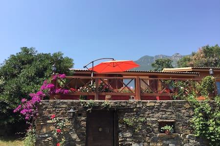 Ambiance cosy entre mer et montagne - Santa Maria Poggio