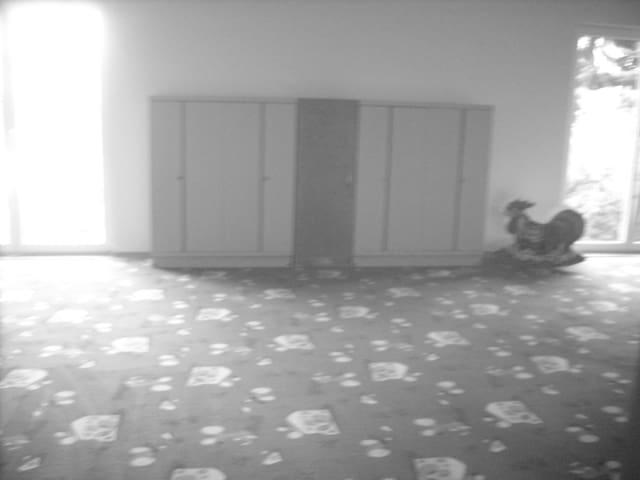 prostor v rod.domě - velký pokoj - Frenštát pod Radhoštěm - Casa