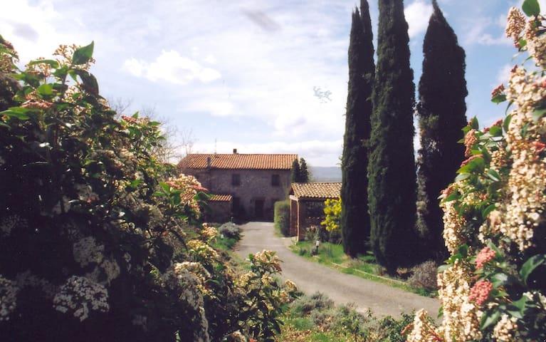 Appartamento ingresso indipendenden - Monteleone d' Orvieto - Bed & Breakfast