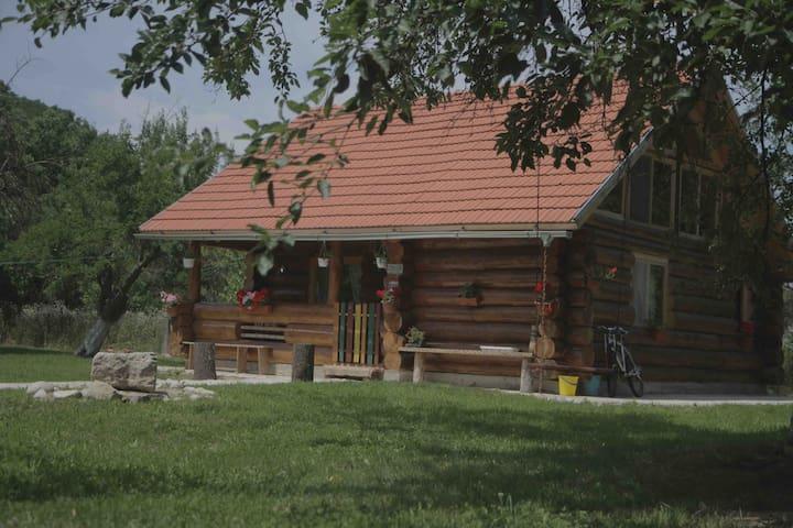 Transylvania Log Cabin - Peșteana - Cabana