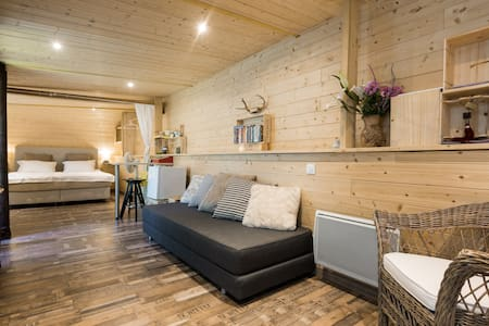 Your suite close to the airport - Cointrin - Cabin