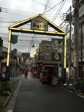 From nippori station ,please walk this street : Yanaga  ginza