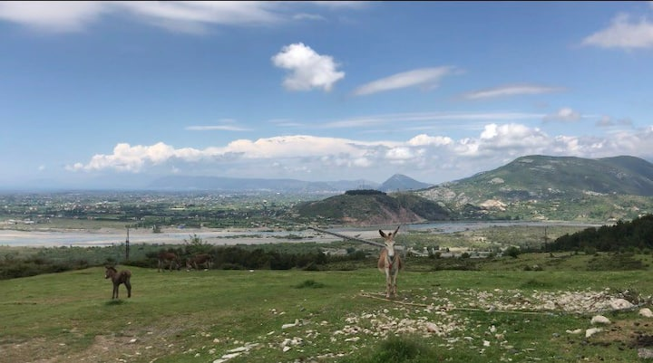 Camping in Malbardh (WhiteMountain) Milot,Albania
