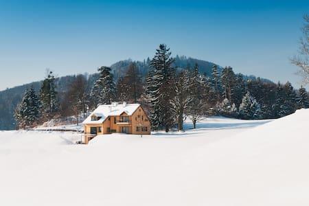 Traumhaftes Architekten-Almhaus in Wien-Nähe - Rabenstein an der Pielach - Villa