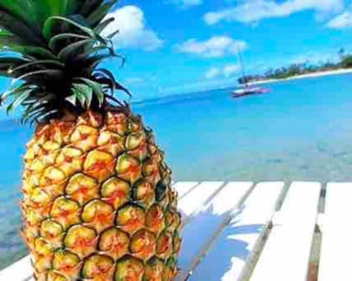 Pineapple in Paradise! Private & close to beach!