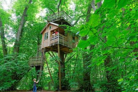 La cabane dans les arbres - Pronleroy - Treehouse