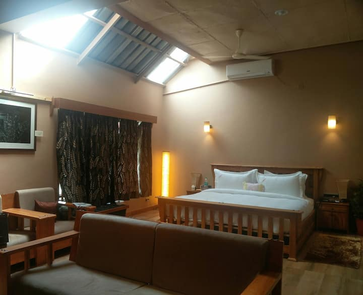 Spacious Executive Suite with two rooms