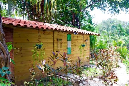 Rio Carmen Rooms *Blue Jay Room* - Malpaís - Cabin