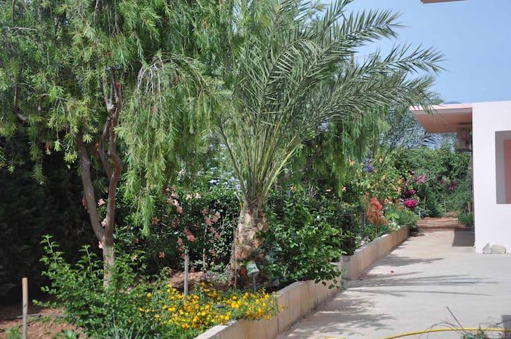 Maison avec terrasse et jardin - Kokkinos Pirgos - Dom
