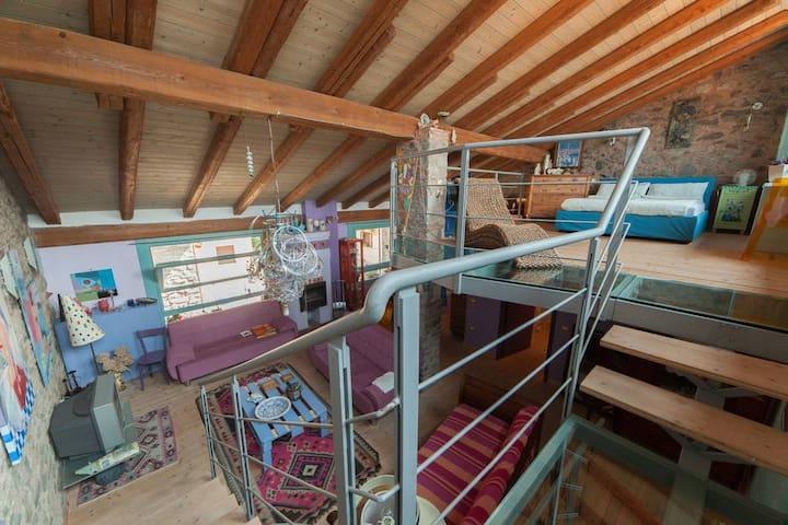 Loft nella preistoria - Nadro - Apartemen