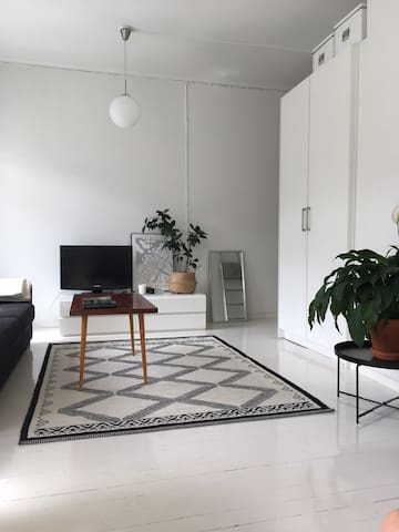 Bright and Cozy Studio in the Hip area of Helsinki