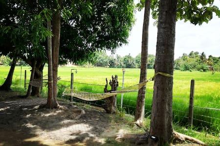 The Polonnaruwa rest