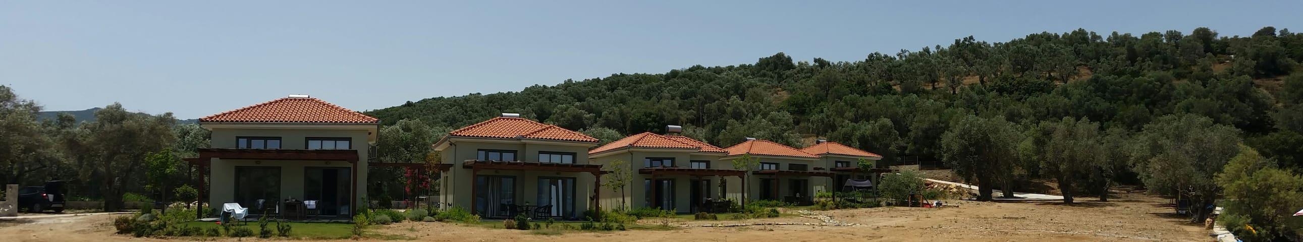 Thea Houses Milina Pelion