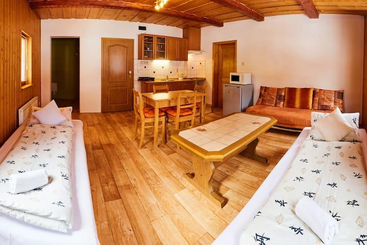 Dvoupokojový apartmán na Šumavě v Železné Rudě
