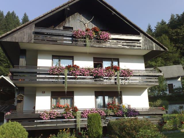 Apartment KLEMEN