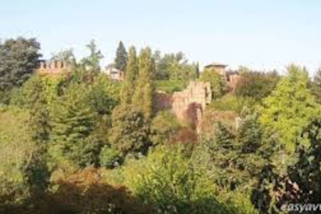 Castello e colline