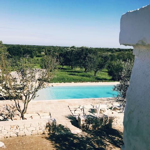 View from the rooftop terrace. On a good day you can see all the way to the sea. On a normal day, just settle for the fantastic sunsets and sea of olive trees