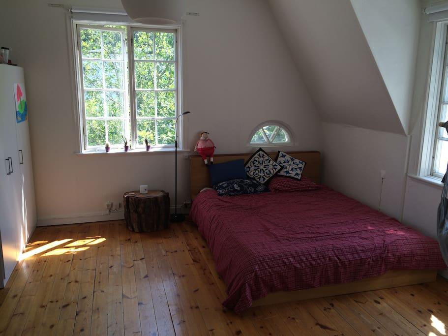 Beautifully sunny room