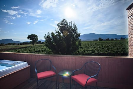 Cozy room for 1 in working vineyard - Palisade - 一軒家