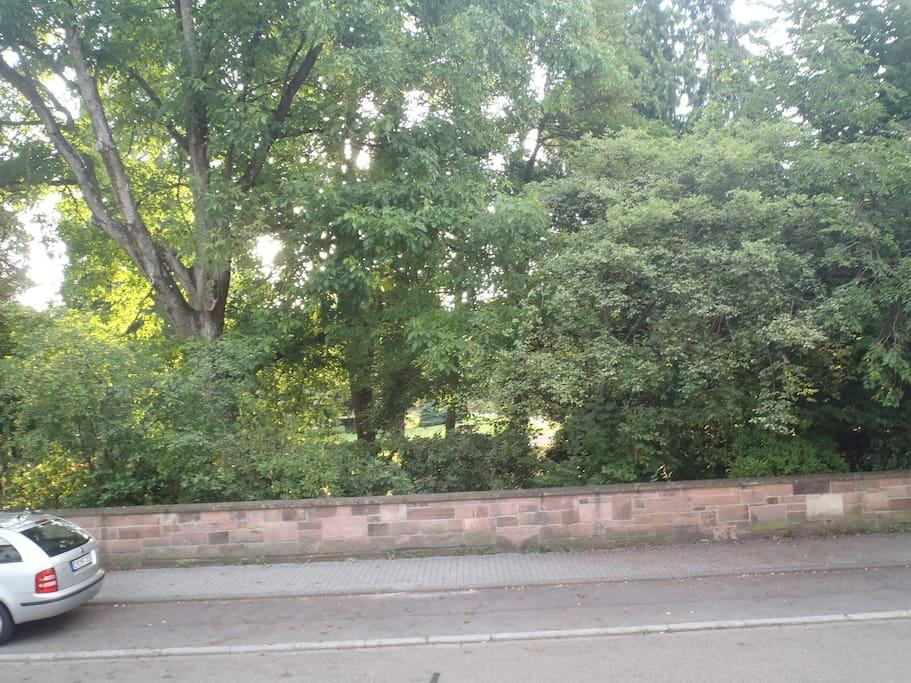Blick aus dem Esszimmer in den Stadtgarten