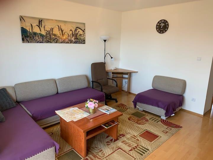 Apartmen Zelenecska