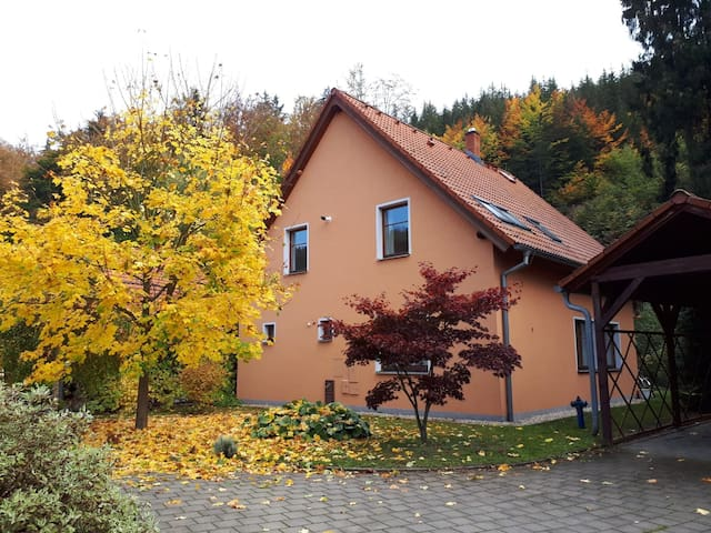 Family house - Villa Bohemia