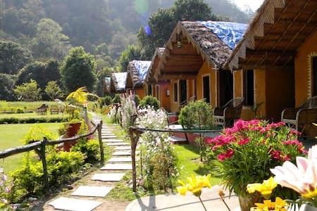 Him River Resort ( Incl. All Meals) - Rishikesh