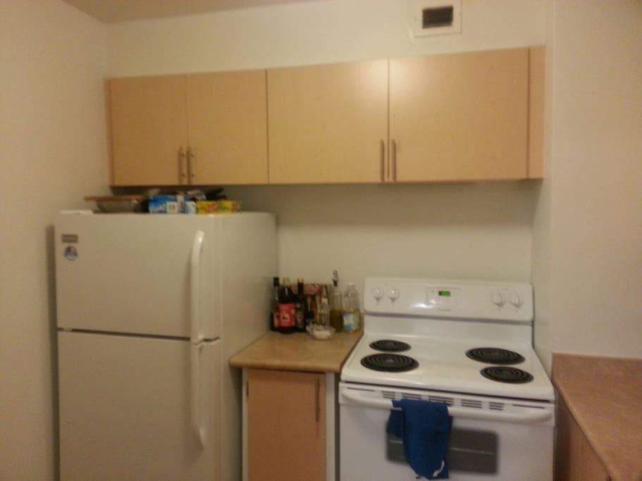 Lots of shelf space, new fridge/stove