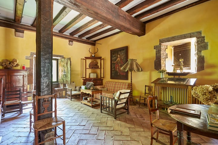 Charming Medieval Palace Apartment