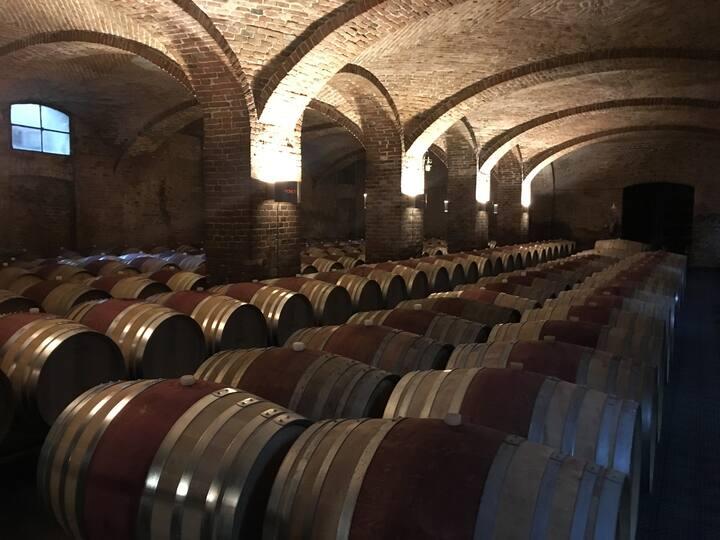 Barolo wineries