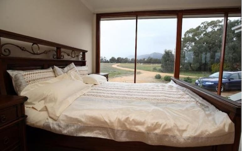 bed with view of mt william mountain