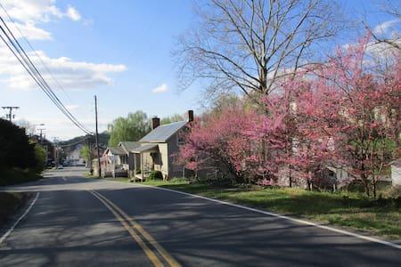 Terrell House, ca 1850 - Scottsville