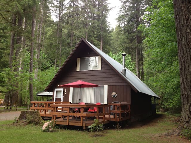 Elk Country Cabin- New Pricing! - Packwood - House