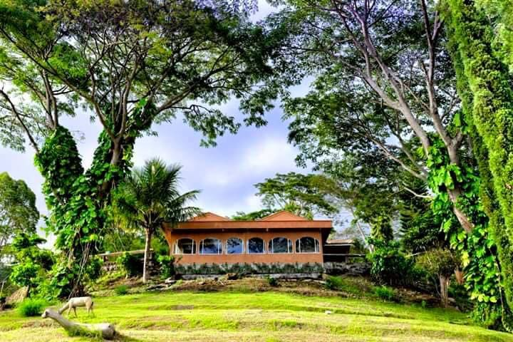 Manulalu Bed & Breakfast: Triple Room 2 with View - Bajawa - Bed & Breakfast