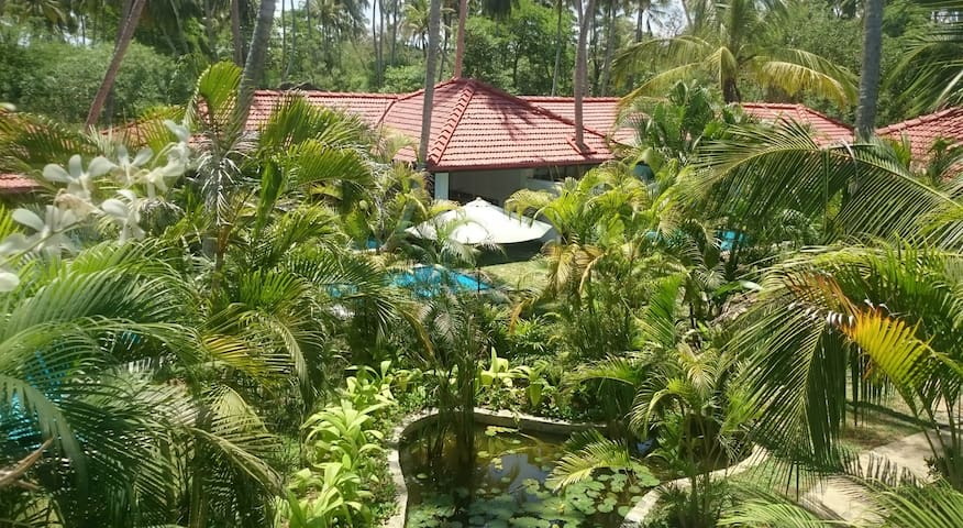 Small villa with private pool - Ranna