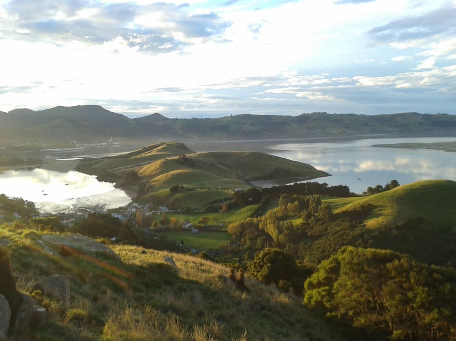 View of Otago Harbour from hill above Possums' End