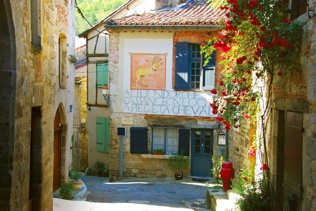 Welcome at Auberge Lion d'Or, Saint Antonin Noble Val, France