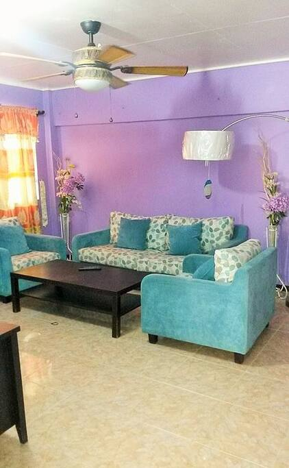 living room  lower unit house