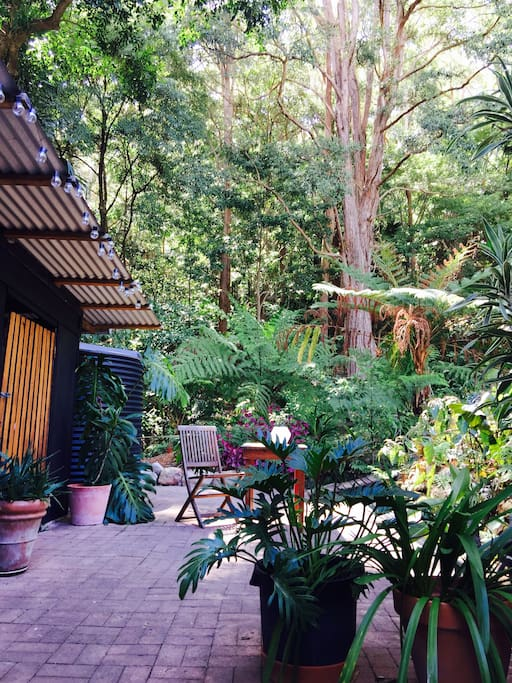 Courtyard backs onto the rainforest