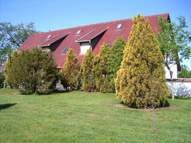Ferienhaus in der Ungarischen Pusta