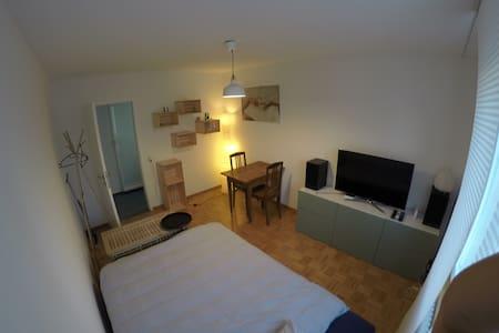 Zimmer im grünen Stadtzentrum - Aarau - Apartment