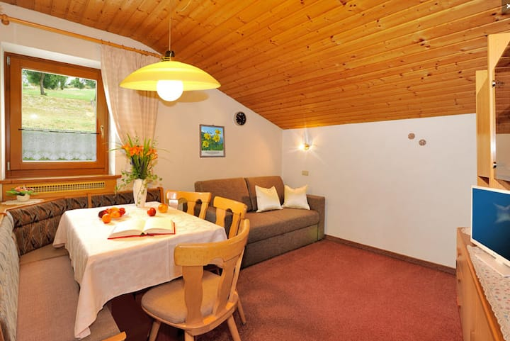 "Charming Apartment ""Haselstaude - Abendrot"" with Mountain View, Wi-Fi, Terrace & Garden; Parking Available"